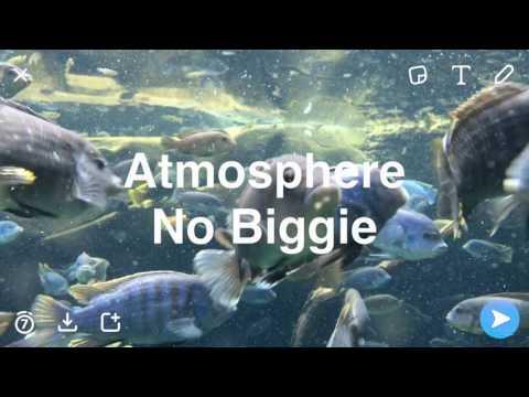 Atmosphere No Biggie music videos 2016