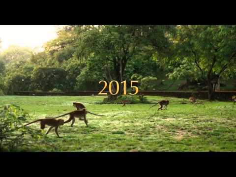 Monkey Kingdom Official Teaser #1 2015 Disneynature Documentary HD
