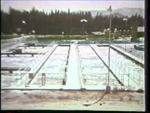 Water Pollution and Treatment 1969