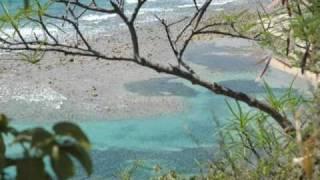 Download US & British Virgin Islands video Tour 2005 3Gp Mp4
