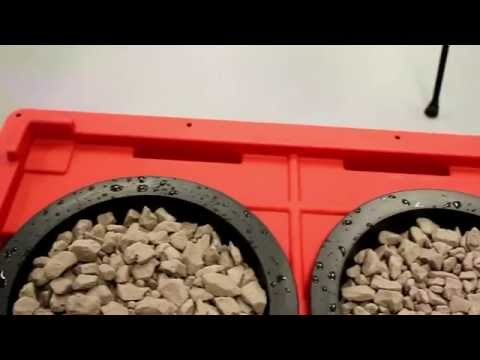 Remo Nutrients R&D - $100 DIY Heavy Duty Hydroponic System