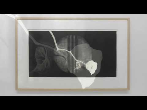 展覧会「鈴木紗綾香」 2014 Oギャラリーeyes [HD] すずきさあや 動画 16