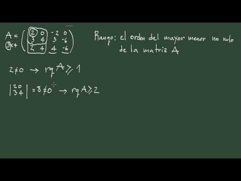 16. Rango de una matriz mediante el método de los menores: explicación y ejemplo