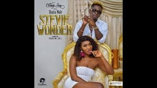 Wendy Shay - Stevie Wonder Ft Shatta Wale (Official Lyric Video)