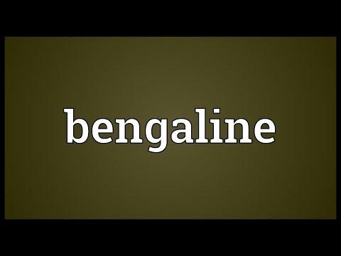 Header of bengaline