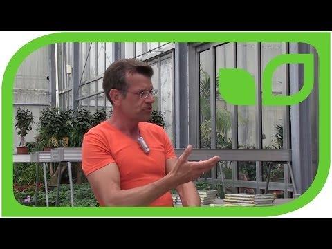 Karl Ploberger über Mulchen Rasenschnitt Und Kompost
