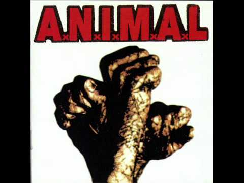 Animal - Lejos De Casa