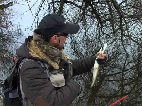 рыбалка по лугански