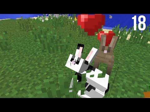 Bunnycraft- Minecraft Diversity 2 W  Stacy Ep 18 video