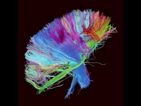 MUSE - Panic Station [The 2nd Law]