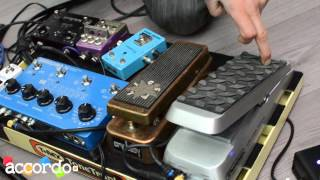 Guthrie Govan: rig with The Aristocrats