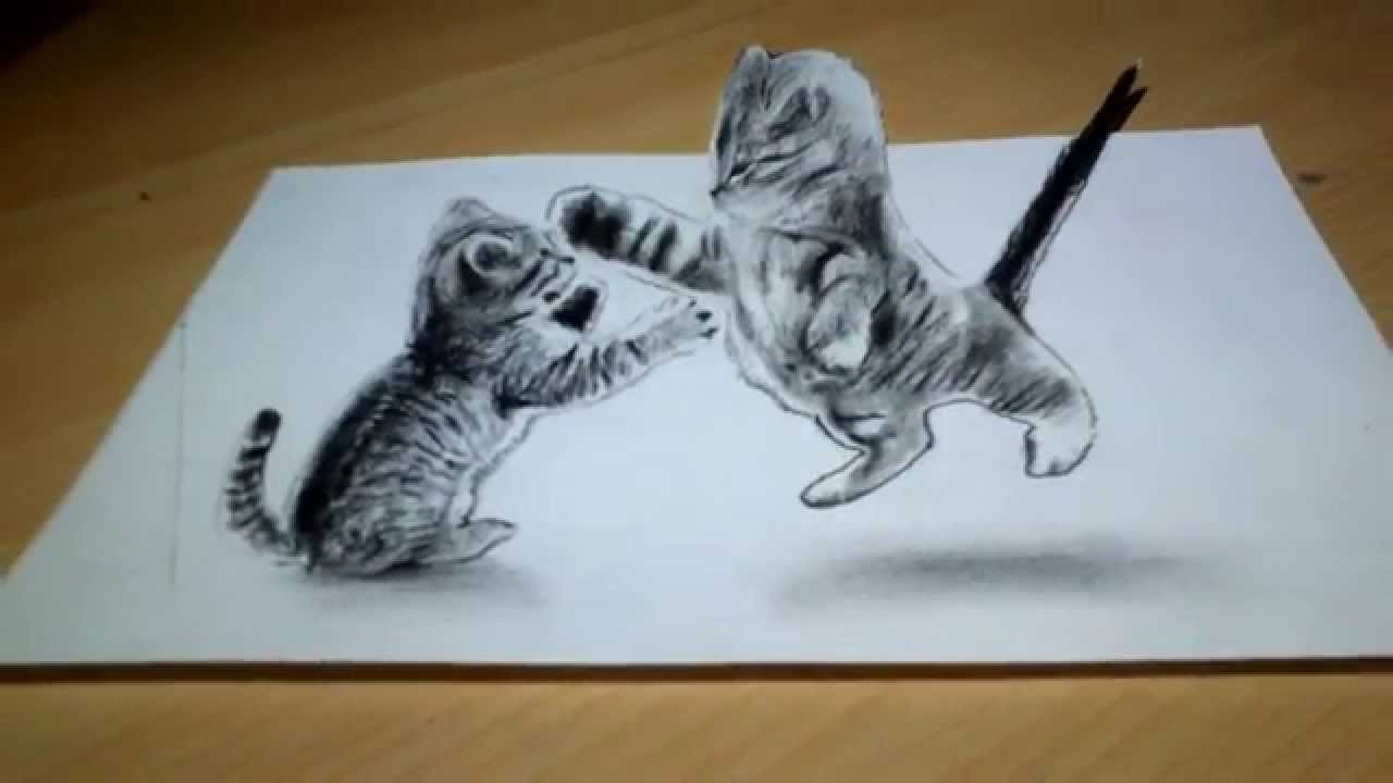 Sketch Cute Cat Cute Cat Drawing 3d Anamorphic