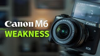 What is bad about Canon M6 and M5 !