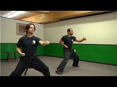 Kung Fu Techniques : How Do I Learn Kung Fu? Image 1