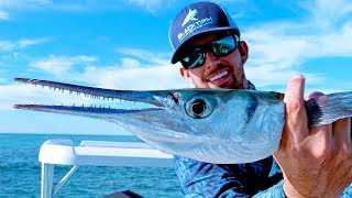 Fishing for Aggressive Houndfish on the Flats in the Bahamas - 4K
