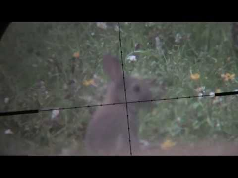 Devon AirGunner May 2012 Rabbit Hunting Weihrauch HW100 Scopecam