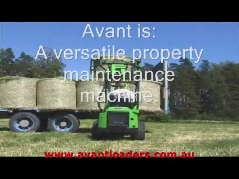 Avant mini loaders
