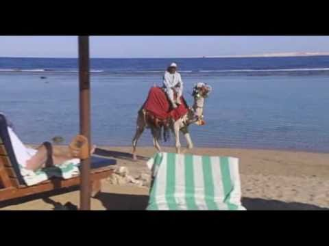 Sharm el Sheikh, Egypt: Travel Guide