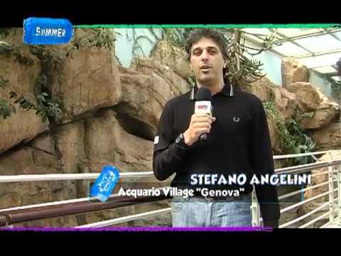 Bagno di emozioni all'Acquario di Genova