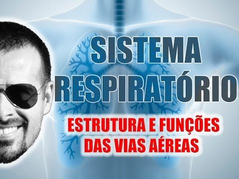 Vídeo Aula 018 - Sistema Respiratório: Estrutura e funções gerais das vias aéreas