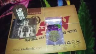 PURPLE KUSH. Hindu Kush X Purple Afghani. 25.5%THC