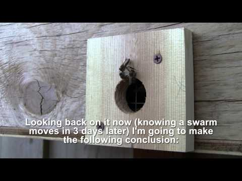 Bait Hive, The Easiest Way To Catch A Swarm   Bee Vlog  90   Apr 25, 2013