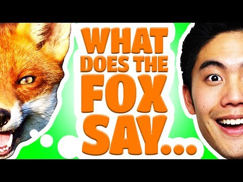 Dear Ryan - What Does The Fox Say? video