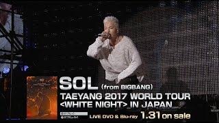 Sol From Bigbang 1am Taeyang 2017 World Tour White Night In Japan