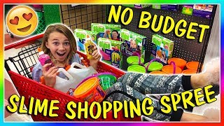 NO BUDGET SLIME SHOPPING SPREE! | We Are The Davises