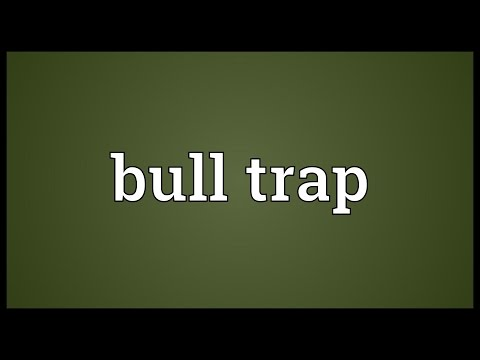 Header of bull trap