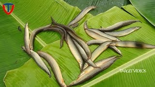 Bommidala live fish with chinthakaya pulusu | Eel Fish Curry with Raw Tamarind spicy recipe
