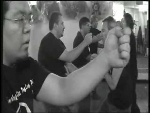 Martial Arts View-Southern Praying Mantis Kung Fu