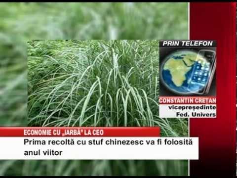 economie cu iarba