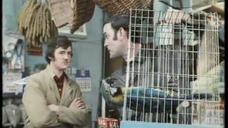 Monty Python: The Parrot Sketch & The Lumberjack Song movie versions HQ
