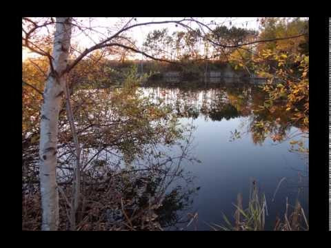 Land for Sale in Wausau | Wooded lots for hunting, fishing, build a home