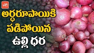 Onion Prices Crash in Madhya Pradesh |  Onion Prices Today