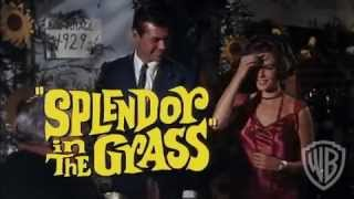 Splendor in the Grass (1961) - Official Trailer