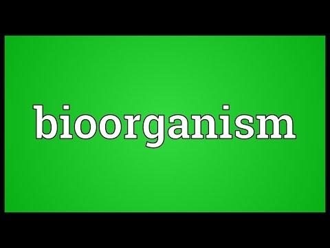 Header of Bioorganism