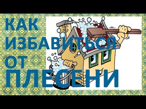 Скачать 1 шаг. . Видеоруководство - Как избавиться от черной плесени в ванной комнате. на Show.pp.ua