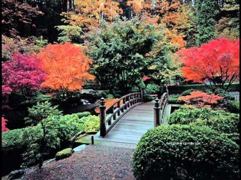 Бутырка - Загуляем осень