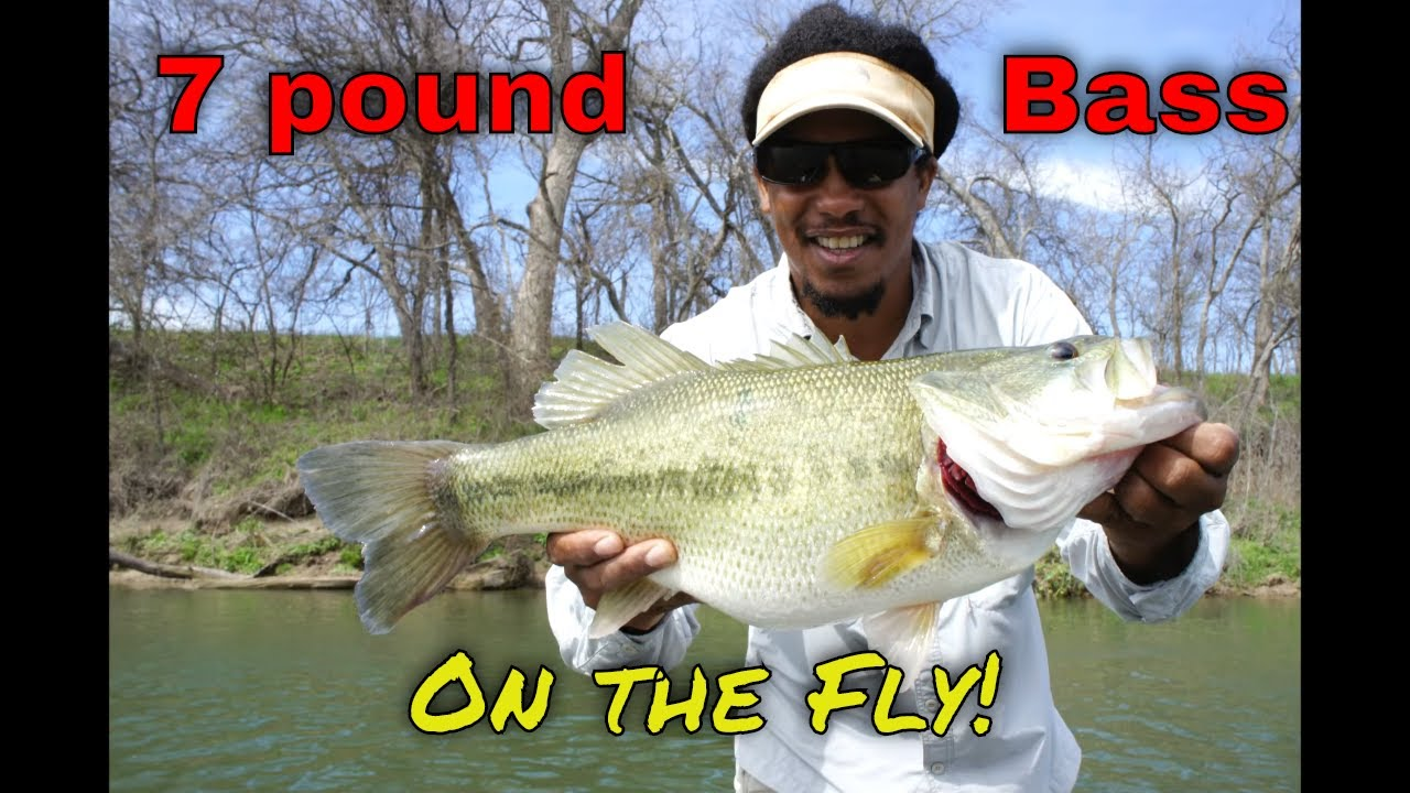 Colorado river below austin texas 2 22 12 youtube for Colorado out of state fishing license