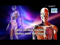 Dr Zakir Naik Urdu Speech 2017 And Question Answer{what Is  Instruction Manual Human Being} HD Urdu