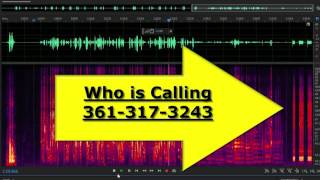 Telemarketer Phone Scam Scammer Who is Calling 361-317-3243 Final Notice Credit Rating Cell Phone