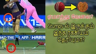 Cricket Stumps-ல் இருக்கும் இந்த ரகசியம் தெரியுமா? ஏமாற்று வேலை?