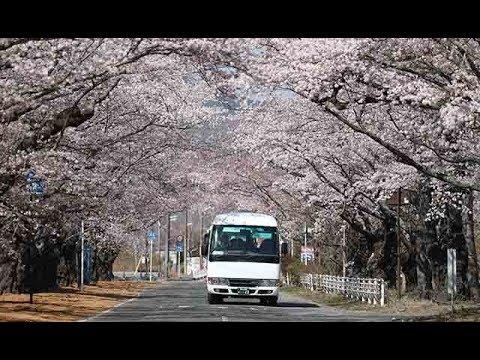 岩屋防衛大臣 沖縄県の宮古島駐屯地を初めて訪問/帰れぬ町、2キロの「桜トンネル」 バスで9年ぶり巡る/統一地方選 各…他