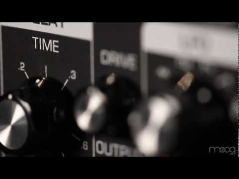 New From Moog