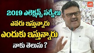YCP Leader Ambati Rambabu Comments on 2019 Elections Surveys | AP CM Chandrababu