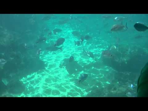 Benidorm Summer 2015 - Aquascope Submarine Viewing(Vision Submarina)