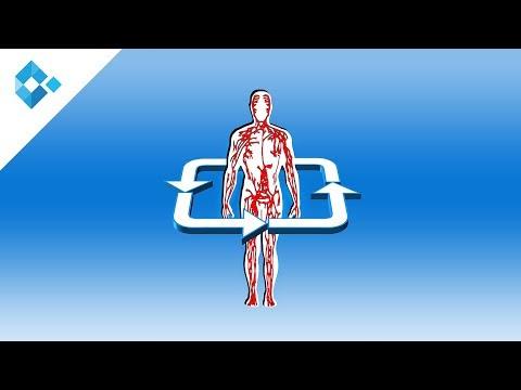 Atherosklerose   Ursachen,Symptome, Diagnose und Therapie