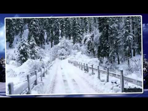 Wolf Kati, Szekeres Adrien, Roy, Ply Barna - Karácsonyi álom
